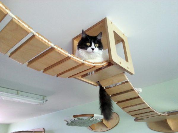 Как обустроить уголок для домашних животных в своей квартире