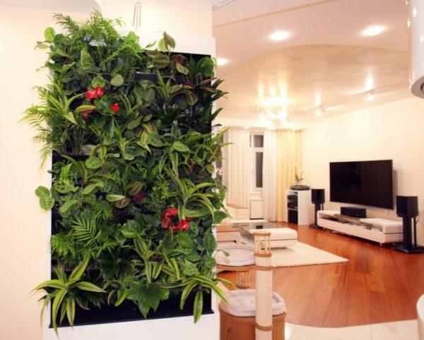 Преимущества фитостены для интерьера квартиры