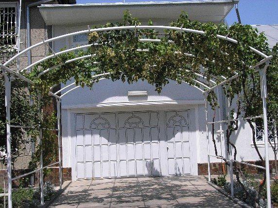 Как сделать виноград аркой 138