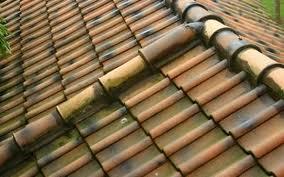 чем крыть крышу на даче