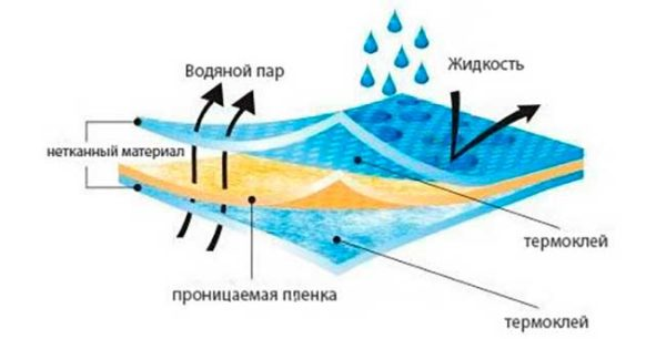 Диффузная мембрана пропускает влагу в одну сторону
