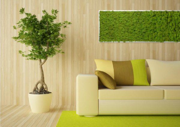 Стоит ли делать живую стену в жилых комнатах