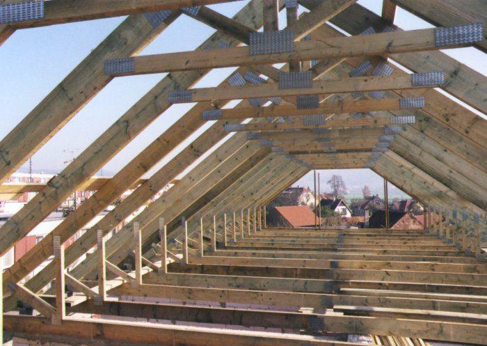 конструкция двускатная крыша
