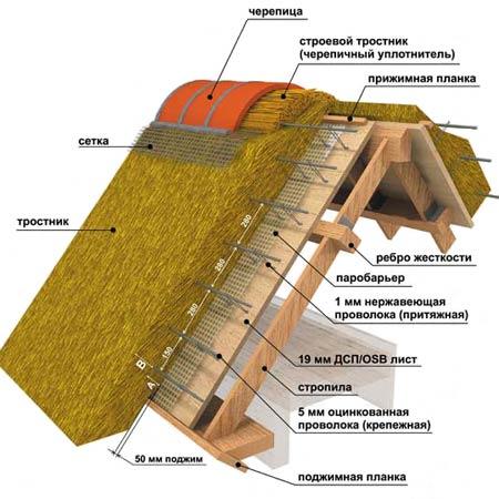 крыши из тростника