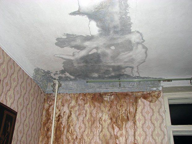 заявление о протечке крыши